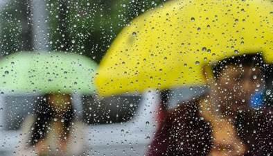 260.5毫米!泰安新泰市汶南镇盘车沟降雨量最大