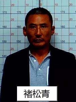 关于公开征集褚松青、褚建峰等人违法犯罪线索的通告