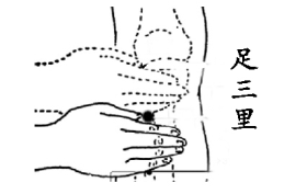 图片据《针灸经络经穴图》3
