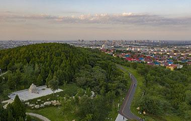 山东潍坊:秋日森林公园美如画