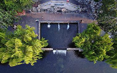 航拍泉城最美秋色:泉池如碧美如玉