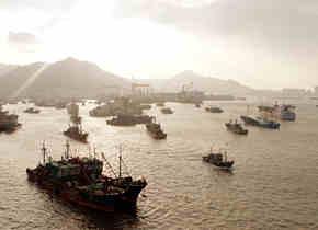 """台风""""玲玲""""过境之后 荣成渔船出海忙"""