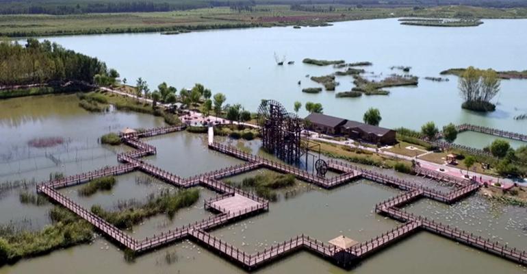 37秒丨脱贫攻坚见成效!聊城万亩黄河位山灌区湿地公园正在建成