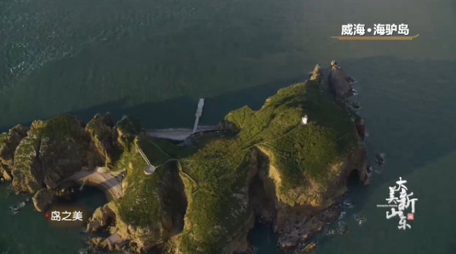 岛之美 海驴岛.png