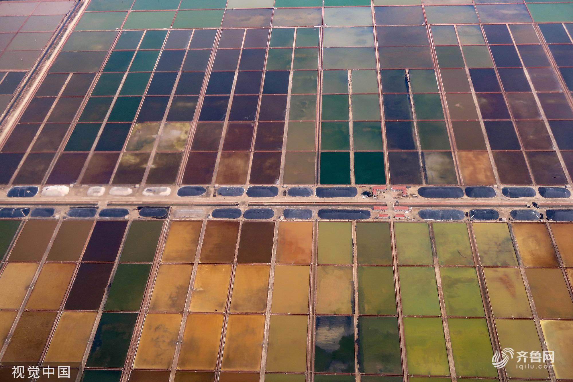 山东东营:航拍五彩盐湖 形如色块景色美