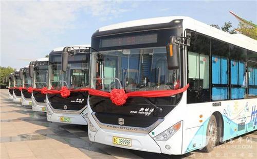 聊城推广燃料电池公交车列入省重点任务