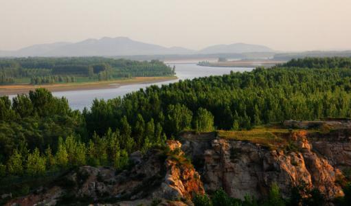 东阿黄河森林公园获评全国森林康养基地试点建设单位