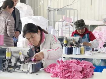 楼上居住楼下就业 今年继续认定10家淄博市巾帼居家创业就业示范基地
