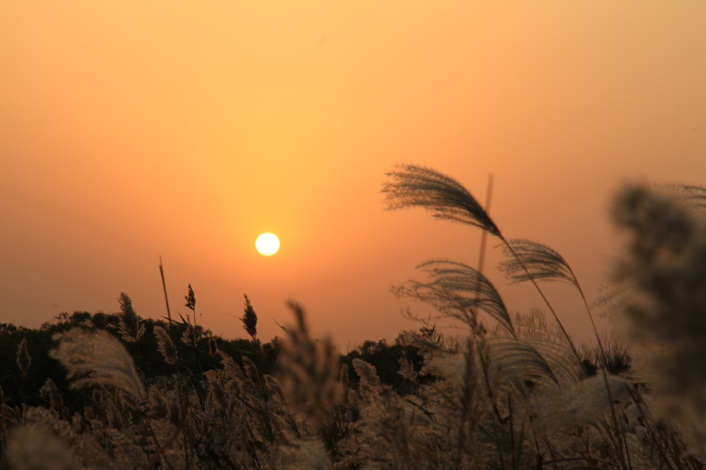 46、夕阳西下。拍摄采风活动结束。谢谢!