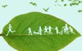 """淄博市启动""""践行文明条例、倡导绿色生活反对铺张浪费""""行动"""