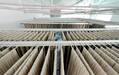 聊城:小麦深加工 订单挂面出国门