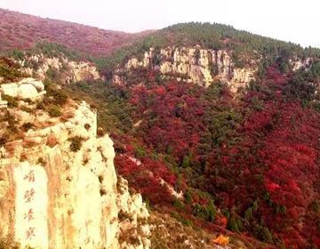 潍坊临朐县石门坊:漫山红遍层林尽染惹人醉