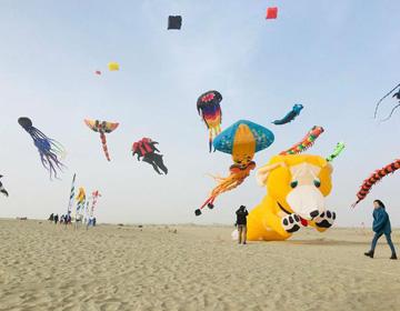 潍坊风筝飞在了塔克拉玛干沙漠上空