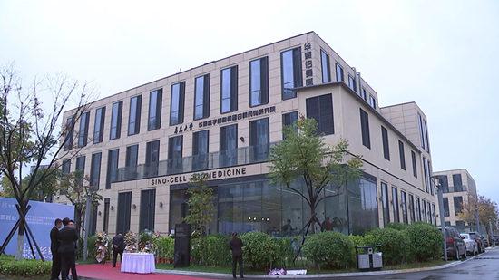 视频|青大华赛研究院揭牌成立 全国首家干细胞公共库落户青岛