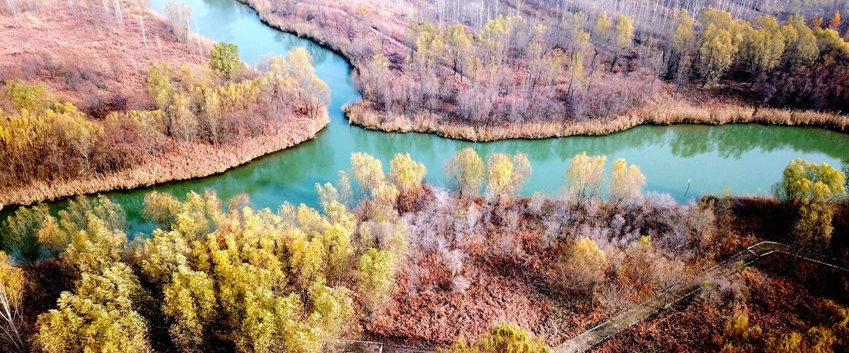 瞰冬日济南湿地公园 别样静谧绘风景画卷