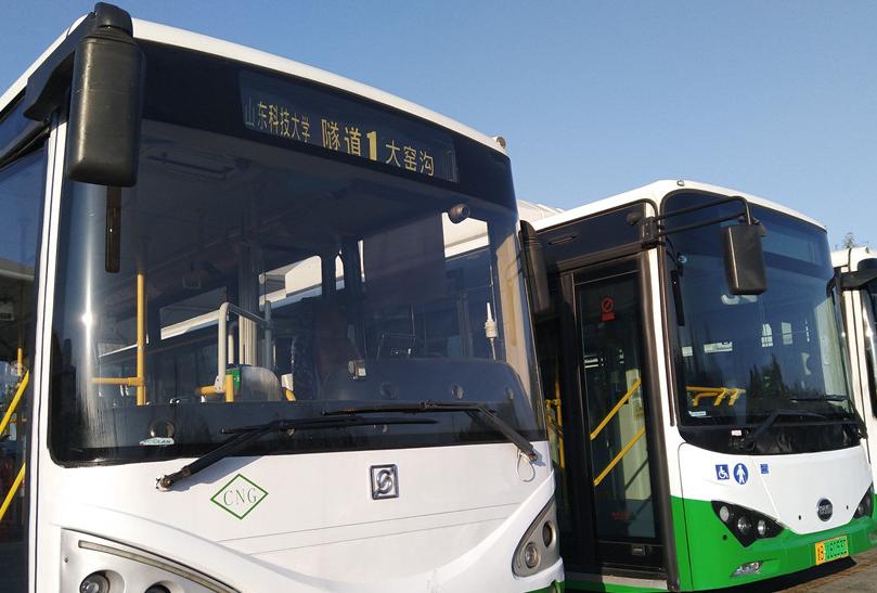 """11月30日起 青岛公交隧道1路线增开""""观赏海鸥区间车"""""""