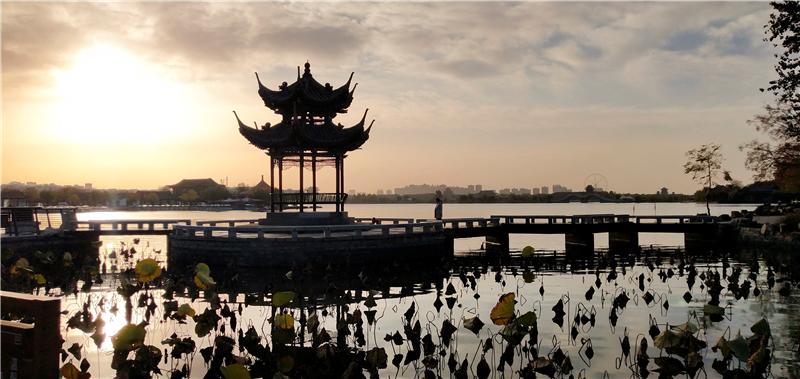聊城:初冬风景美如画