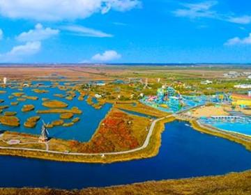 寿光巨淀湖湿地 冬日别样风情