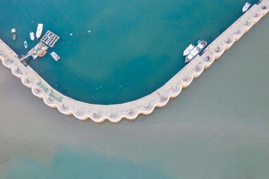 青岛渔港现奇观!一样海水两样颜色