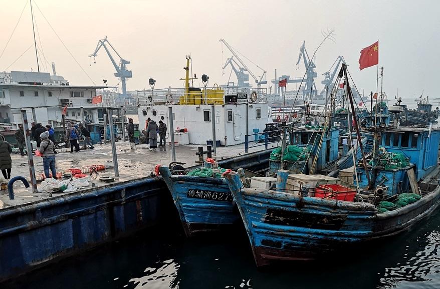 实拍冬日小港码头 美味海鲜一筐筐往岸上搬