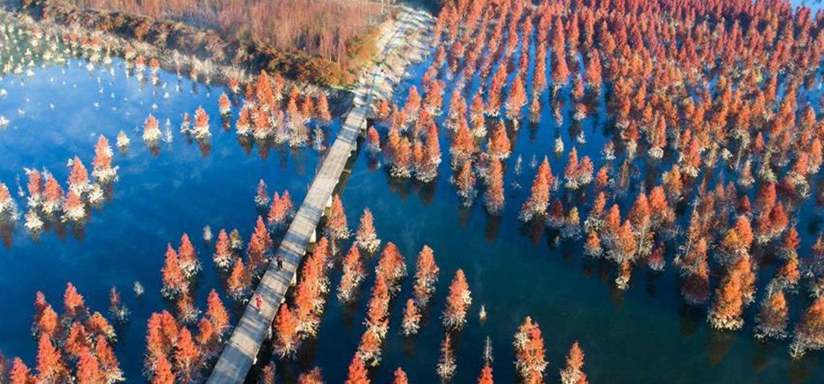 航拍:美丽家园 生态中国