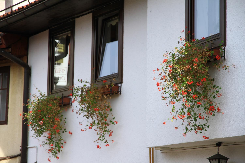 5、萨拉热窝街景
