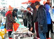 """冬日里小海鲜10多块一斤,青岛海边人""""独享""""味道"""