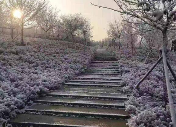 淄博九顶山森林公园竣工后迎首场雪,景色美爆
