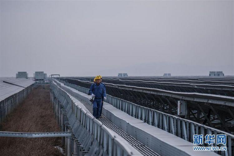 (经济)(4)浙江省内最大规模海涂光伏发电项目正式投运