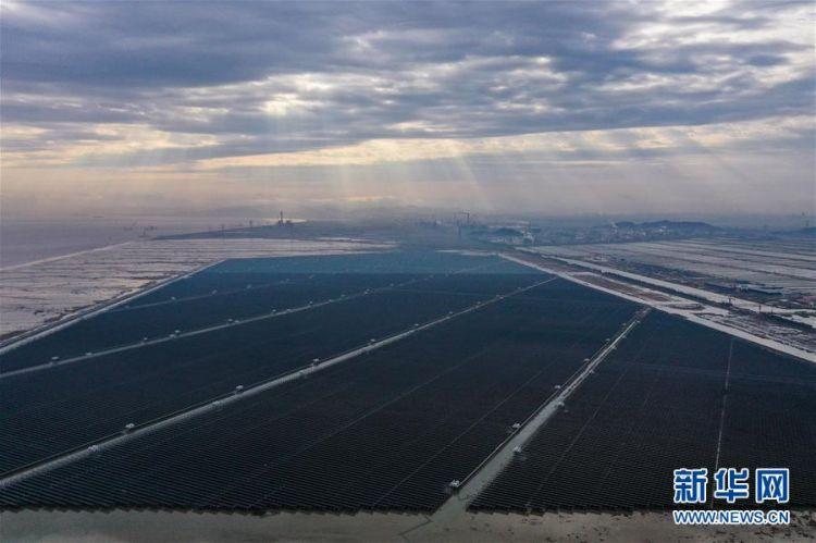 (经济)(1)浙江省内最大规模海涂光伏发电项目正式投运