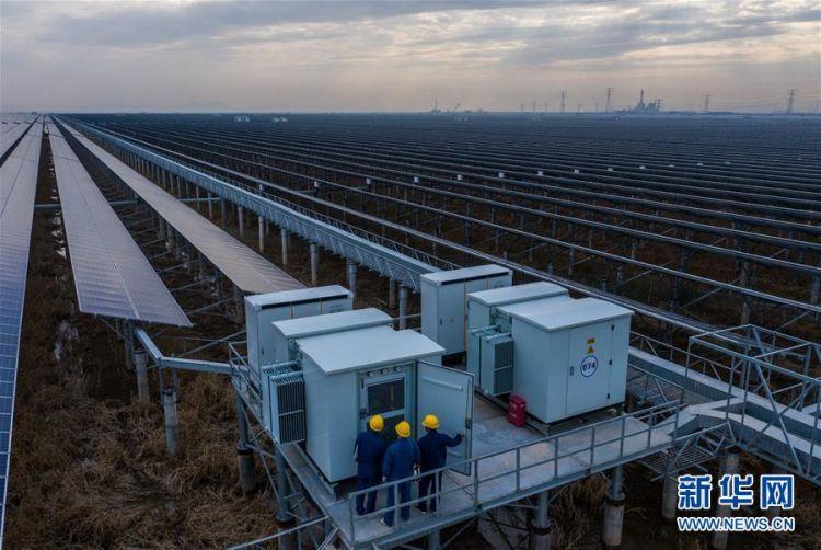 (经济)(5)浙江省内最大规模海涂光伏发电项目正式投运