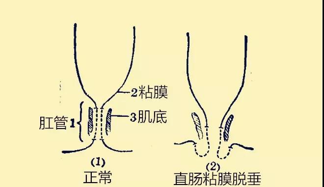 微信图片_20200102101653.jpg