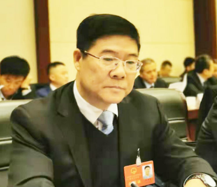 聚焦淄博两会丨市人大代表王加荣:锲而不舍塑造高质量发展新优势