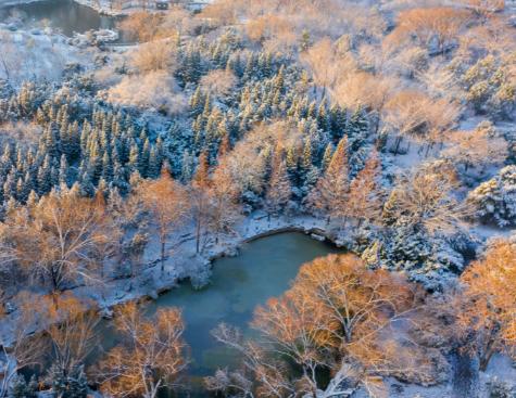 初雪后的泉城公园美景如画