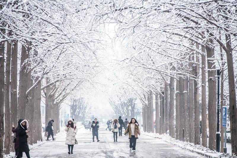大学校园遇上雪 哪抹景色最让你心动?