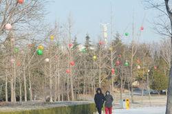 """淄博高新区85万元打造新春""""不夜天""""预计腊月廿七全部亮起来"""