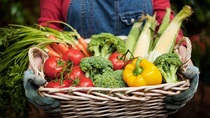 新鮮蔬菜全配齊!記者直擊濟南蔬菜配送倉庫