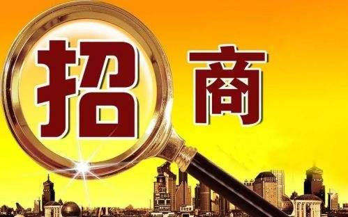 """东营综合保税区:发展不暂停 招商""""屏对屏"""""""