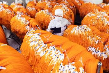 淄博保障物资供应与县域经济平稳运行
