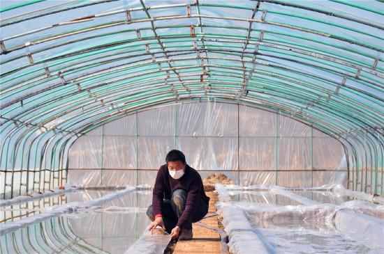淄博春耕备耕忙 确保农业生产、疫情防控两不误