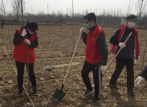 龙居镇举办春季义务植树暨重点项目集中开工仪式