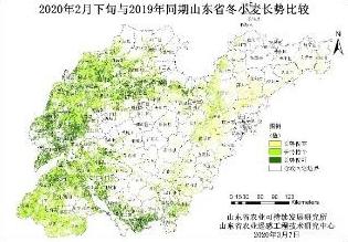 复工复产用上了卫星遥感数据技术!山东今年小麦长势同期相比较好