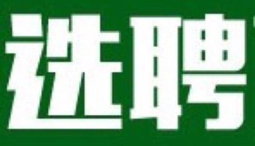 淄博高新区2个国有公司公开选聘主要领导