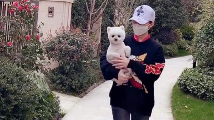 潘晓婷抱爱犬散步,球迷:被抱着还一脸嫌弃