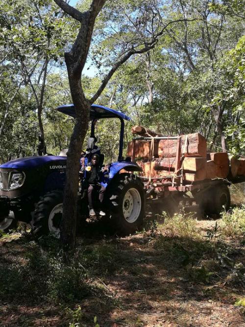 雷沃拖拉机运输木材1