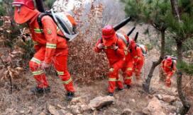 淄博组建森林消防专业队伍 首次招录森林专职消防员