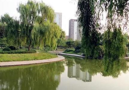 利用5个月时间提升景观工程 淄博市植物园、莲池公园4月23日起改造
