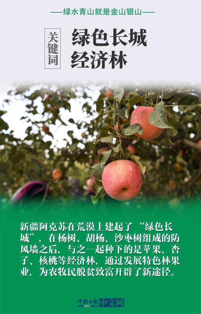 轩辕传奇怎么赚钱:【图说中国经济】践行绿色发展理念,这就是中国行动力!
