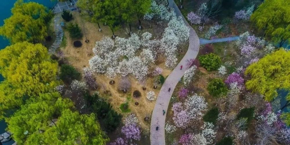 济南千佛山风景名胜区等14家公园延长开放时间