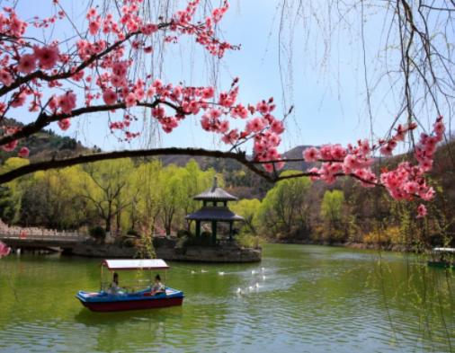 春日近郊出行攻略,带你到济南的后花园嗨翻天
